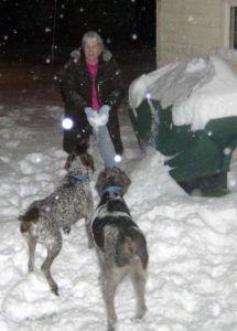 sandra viger with her dogs